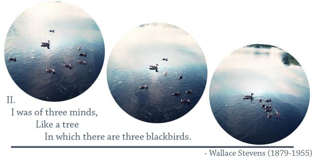 IIofblackbirds