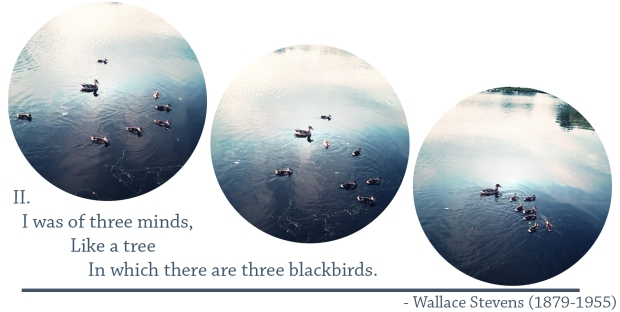 IIofblackbirds
