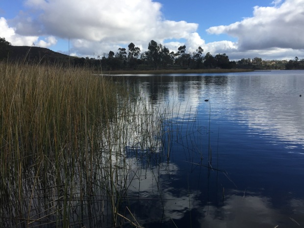 photograph of Lake Miramar, California
